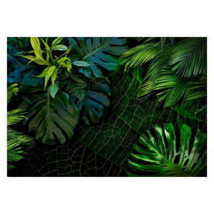 Velkoformátová tapeta Bimago Dark Jungle, 400 x 280 cm