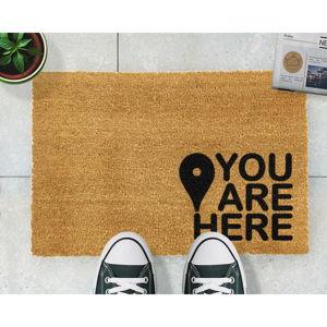 Rohožka z přírodního kokosového vlákna Artsy Doormats You Are,40x60cm